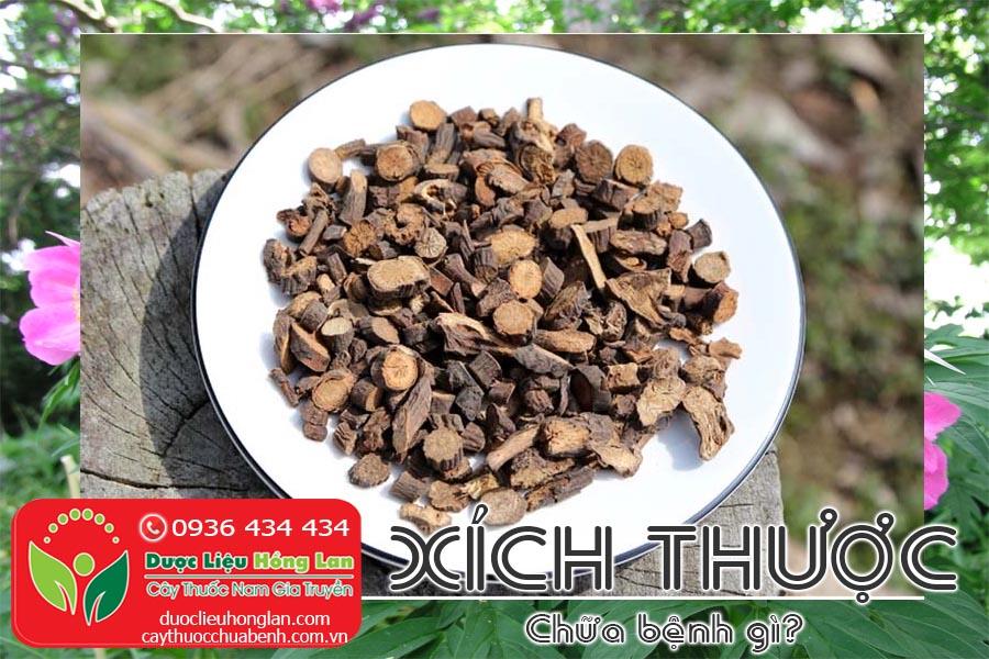 VI-THUOC-XICH-THUOC-CHUA-BENH-GI-CTY-DUOC-LIEU-HONG-LAN