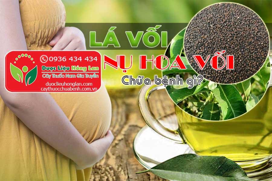 LA-VOI-NU-HOA-VOI-CHUA-BENH-GI-CTY-DUOC-LIEU-HONG-LAN