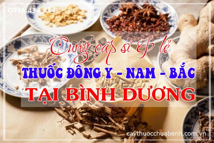 binh-duong-mua-ban-si-le-thuoc-dong-y-nam-bac-ctyduoclieuhonglan