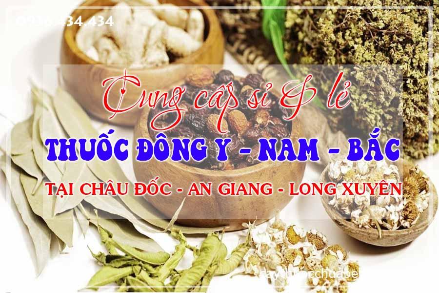 chau-doc-an-giang-long-xuyen-mua-ban-si-le-thuoc-dong-y-nam-bac-ctyduoclieuhonglan