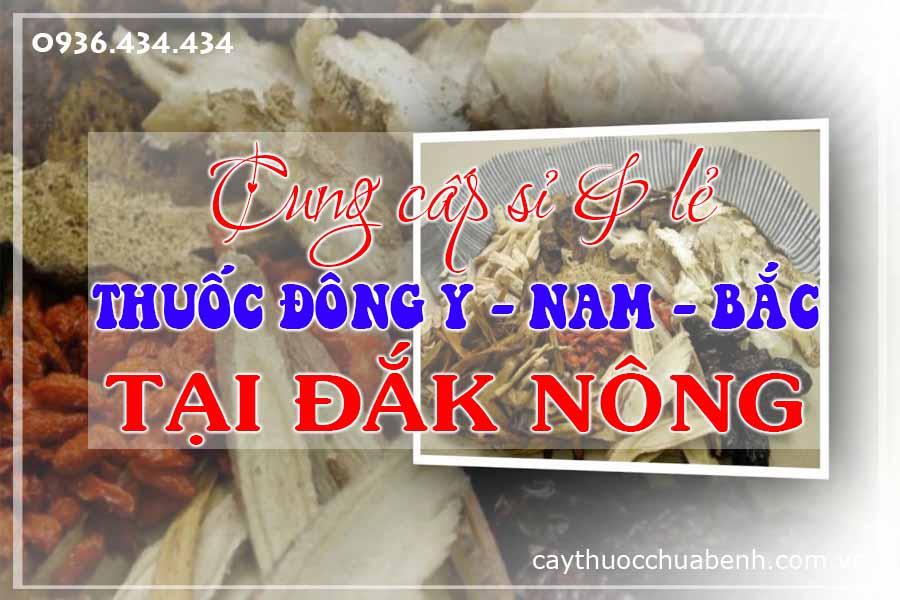 dak-nong-mua-ban-si-le-thuoc-dong-y-nam-bac-ctyduoclieuhonglan