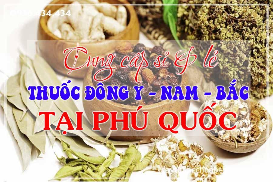 dao-phu-quoc-mua-ban-si-le-thuoc-dong-y-nam-bac-ctyduoclieuhonglan