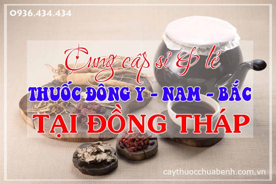 dong-thap-mua-ban-si-le-thuoc-dong-y-nam-bac-ctyduoclieuhonglan