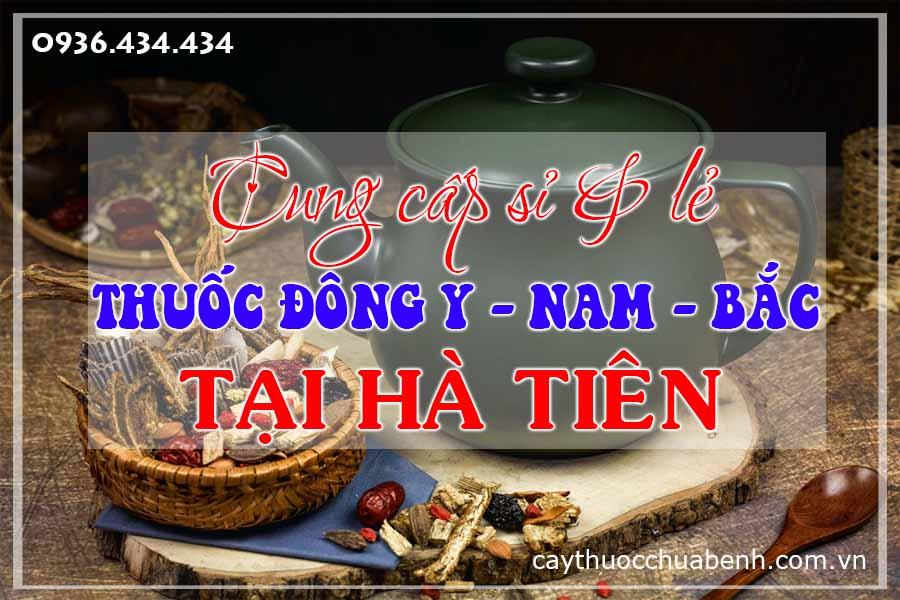 ha-tien-mua-ban-si-le-thuoc-dong-y-nam-bac-ctyduoclieuhonglan