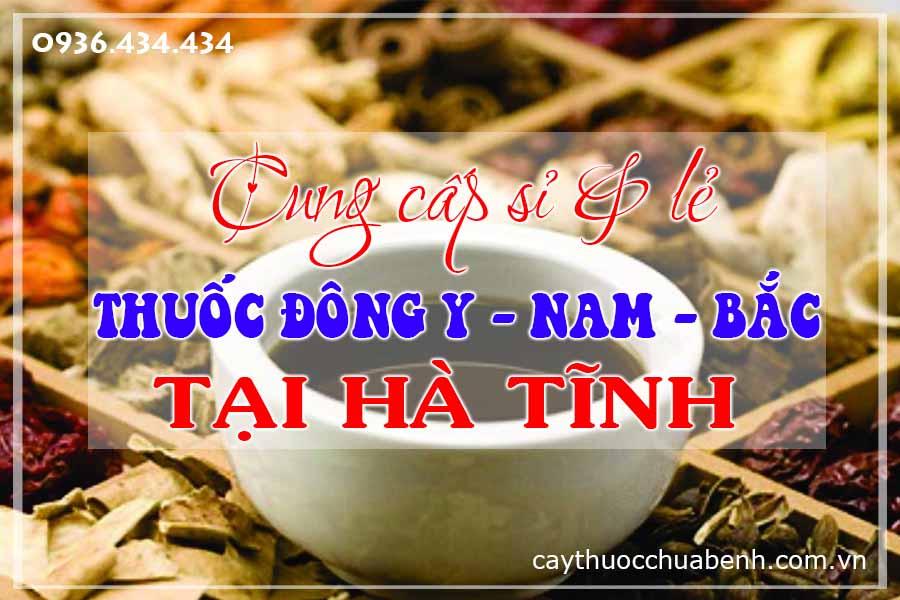 ha-tinh-mua-ban-si-le-thuoc-dong-y-nam-bac-ctyduoclieuhonglan
