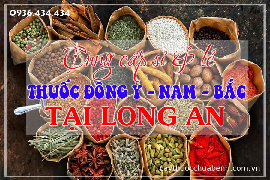 long-an-mua-ban-si-le-thuoc-dong-y-nam-bac-ctyduoclieuhonglan
