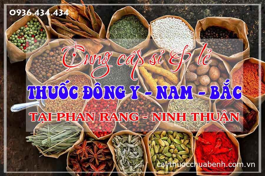 phan-rang-ninh-thuan-mua-ban-si-le-thuoc-dong-y-nam-bac-ctyduoclieuhonglan