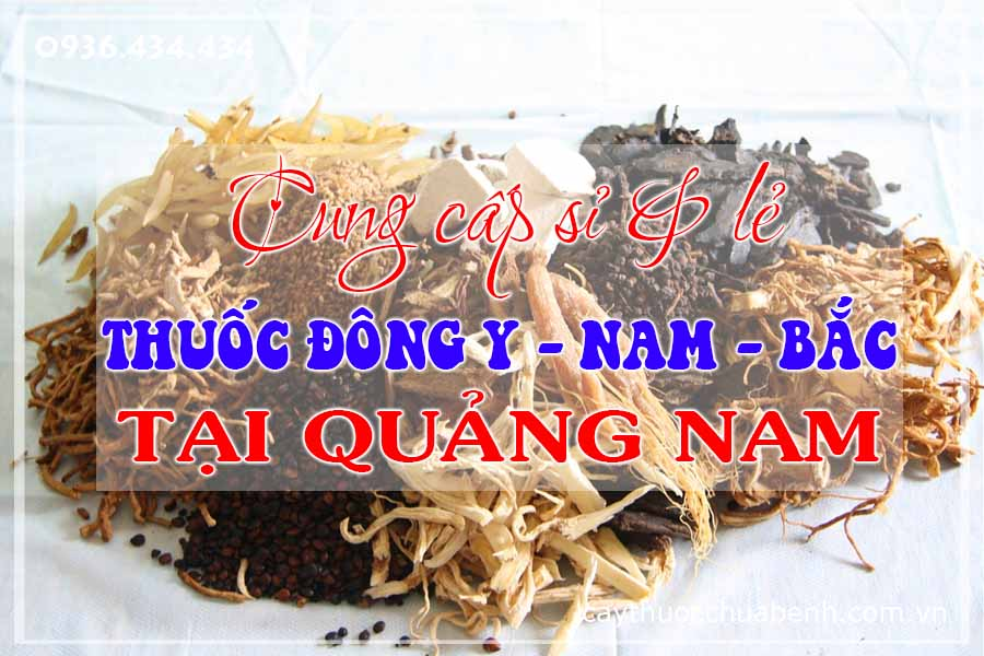 quang-nam-mua-ban-si-le-thuoc-dong-y-nam-bac-ctyduoclieuhonglan