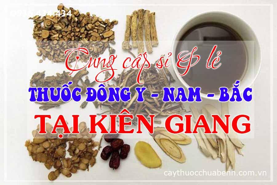 rach-gia-kien-giang-mua-ban-si-le-thuoc-dong-y-nam-bac-ctyduoclieuhonglan