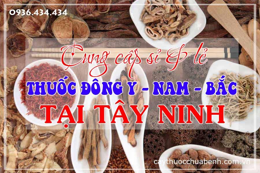 tay-ninh-mua-ban-si-le-thuoc-dong-y-nam-bac-ctyduoclieuhonglan