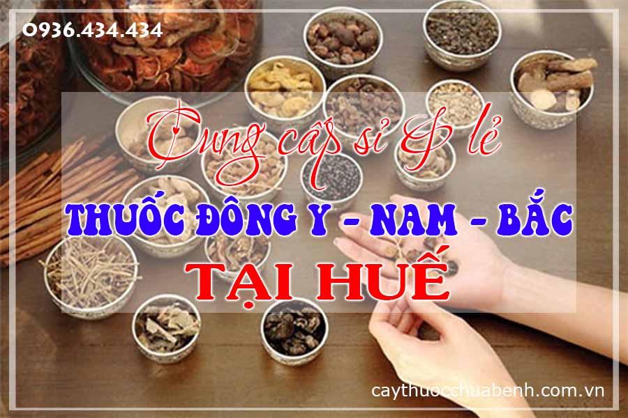 thua-thien-hue-mua-ban-si-le-thuoc-dong-y-nam-bac-ctyduoclieuhonglan
