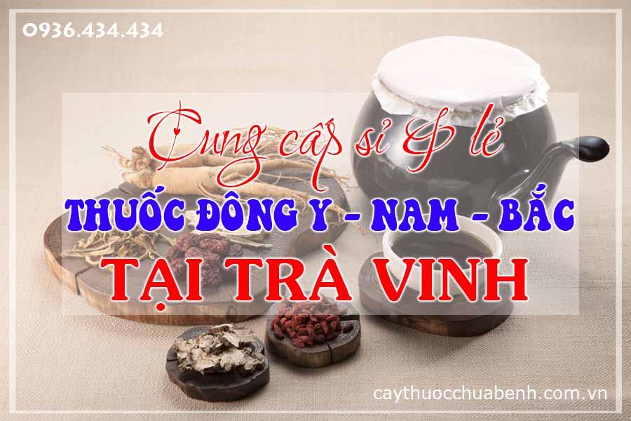 tra-vinh-mua-ban-si-le-thuoc-dong-y-nam-bac-ctyduoclieuhonglan