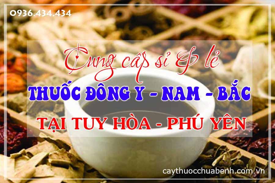 tuy-hoa-phu-yen-mua-ban-si-le-thuoc-dong-y-nam-bac-ctyduoclieuhonglan