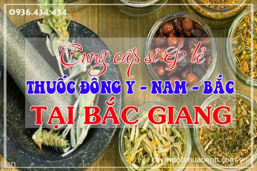 bac-giang-mua-ban-si-le-thuoc-dong-y-nam-bac-ctyduoclieuhonglan