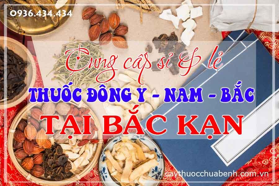 bac-kan-mua-ban-si-le-thuoc-dong-y-nam-bac-ctyduoclieuhonglan