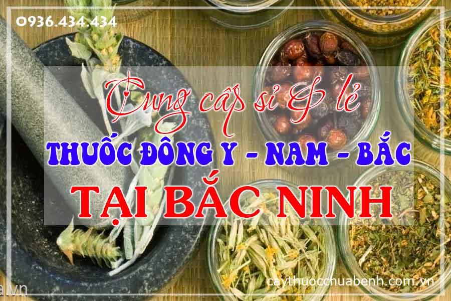 bac-ninh-mua-ban-si-le-thuoc-dong-y-nam-bac-ctyduoclieuhonglan