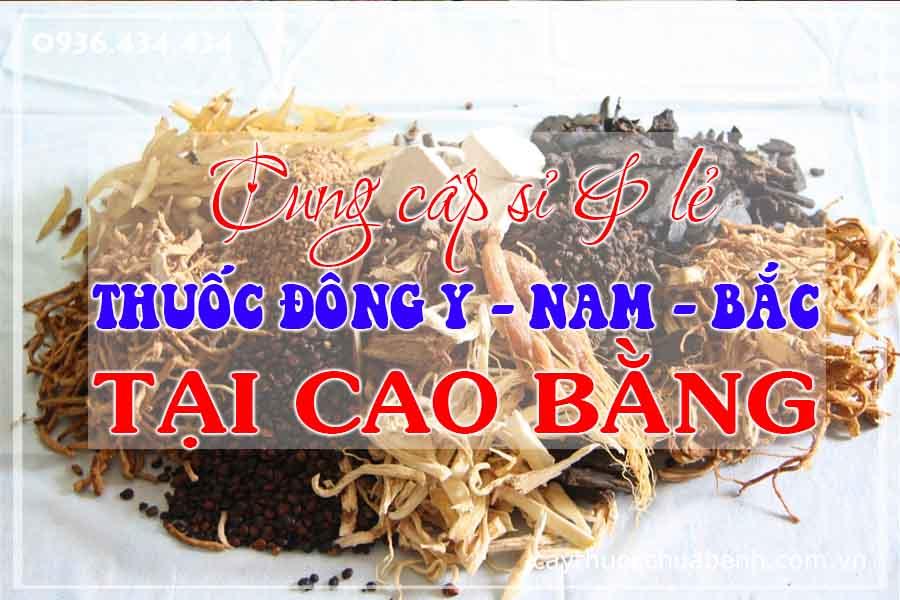cao-bang-mua-ban-si-le-thuoc-dong-y-nam-bac-ctyduoclieuhonglan
