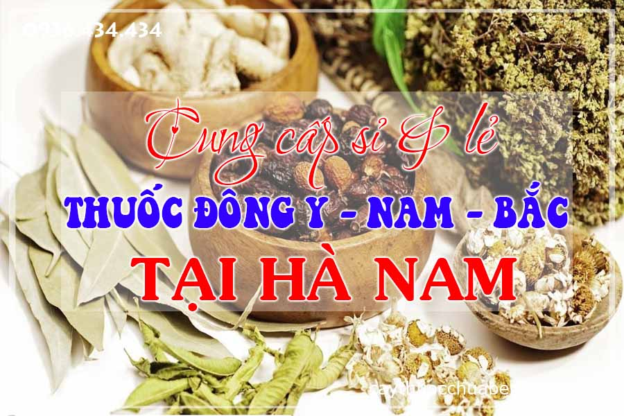 ha-nam-mua-ban-si-le-thuoc-dong-y-nam-bac-ctyduoclieuhonglan