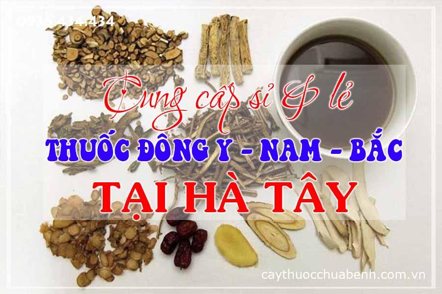 ha-tay-mua-ban-si-le-thuoc-dong-y-nam-bac-ctyduoclieuhonglan