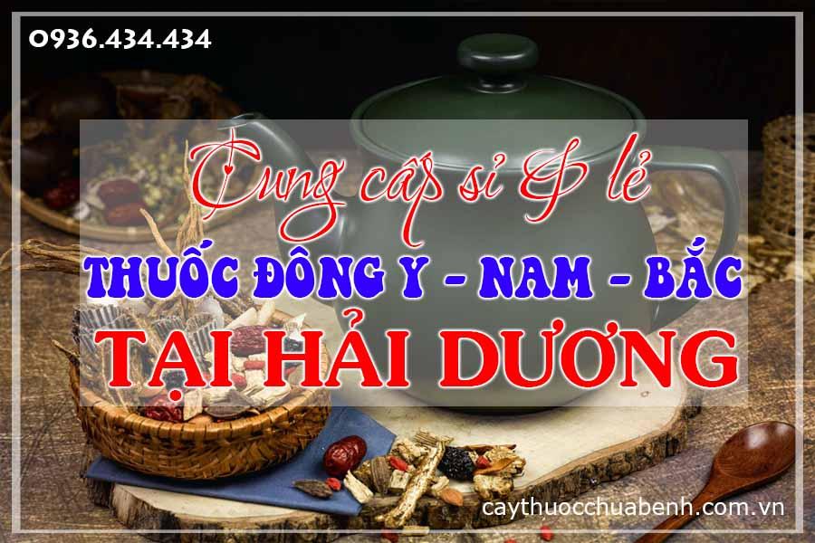 hai-duong-mua-ban-si-le-thuoc-dong-y-nam-bac-ctyduoclieuhonglan