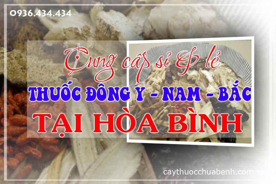 hoa-binh-mua-ban-si-le-thuoc-dong-y-nam-bac-ctyduoclieuhonglan