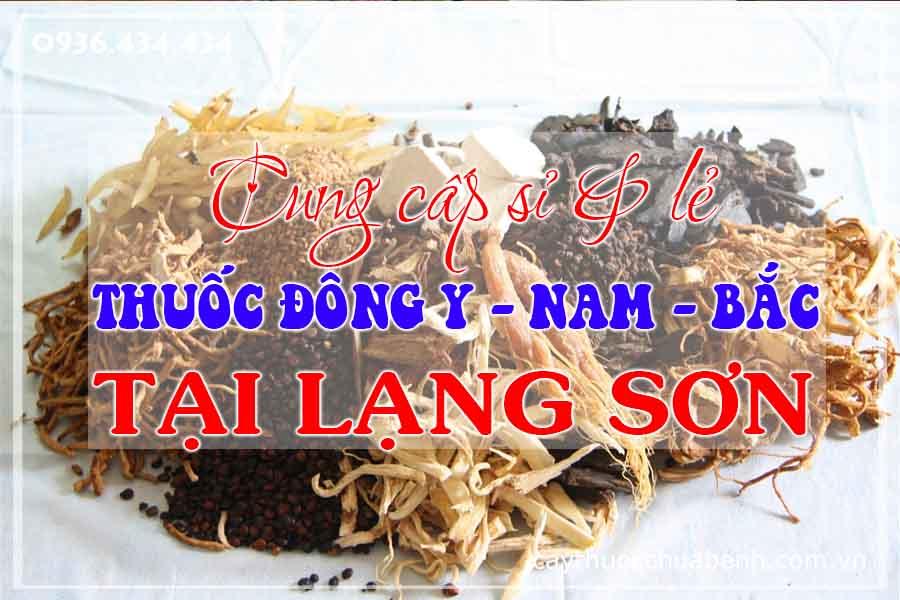 lang-son-mua-ban-si-le-thuoc-dong-y-nam-bac-ctyduoclieuhonglan