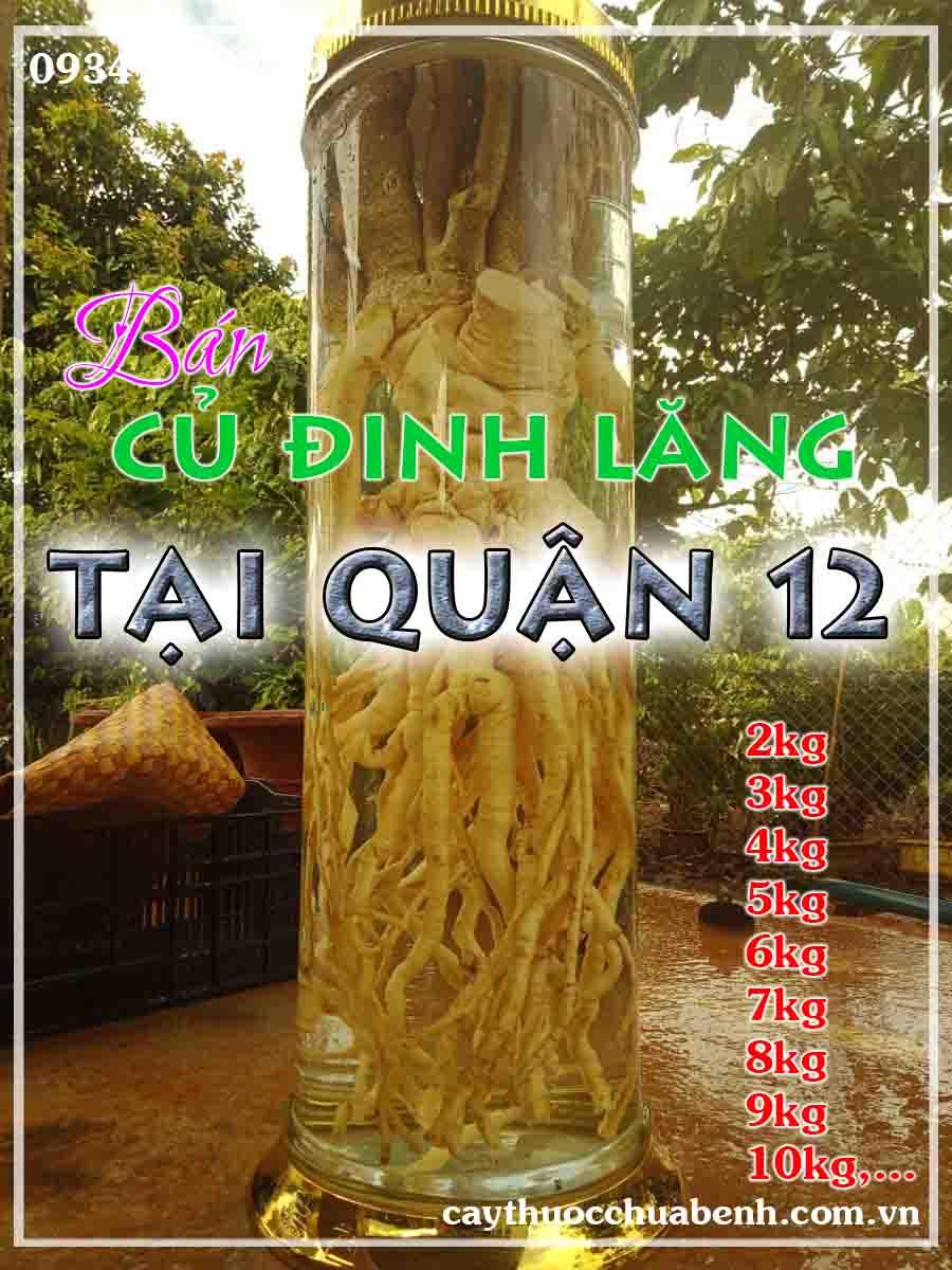 mua-cu-dinh-lang-tuoi-nep-la-nho-ngam-ruou-o-dau-tai-quan-12-ctyduoclieuhonglan