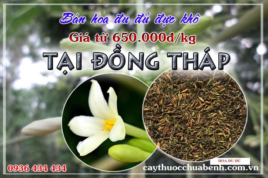 mua-hoa-du-du-duc-kho-o-dau-dong-thap-ctyduoclieuhonglan