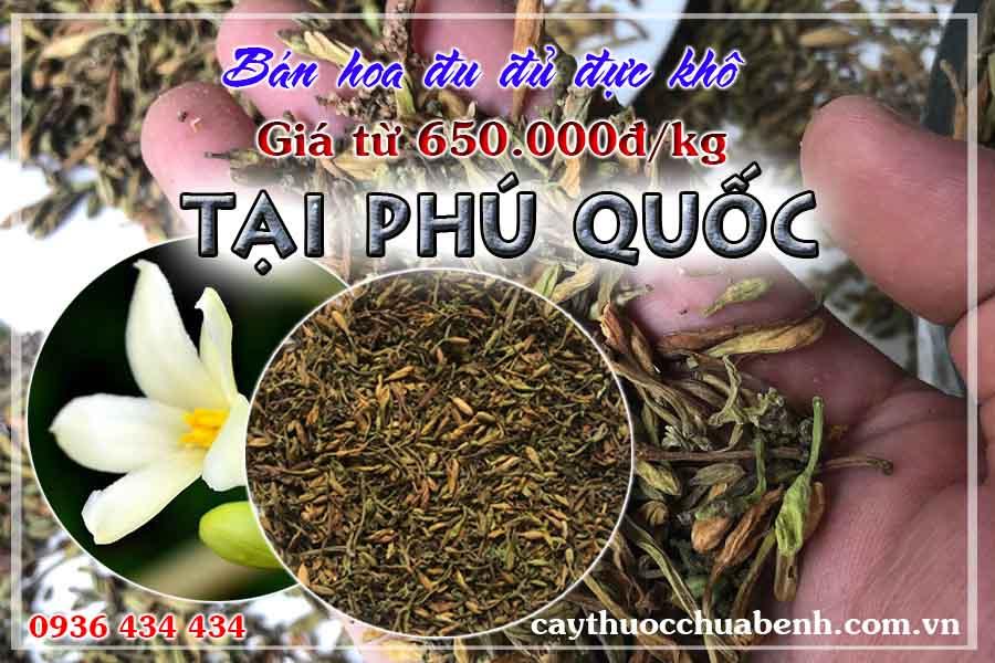 mua-hoa-du-du-duc-kho-o-dau-phu-quoc-ctyduoclieuhonglan