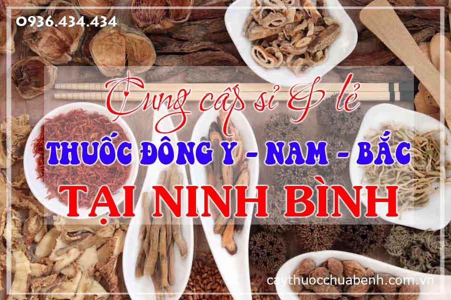 ninh-binh-mua-ban-si-le-thuoc-dong-y-nam-bac-ctyduoclieuhonglan