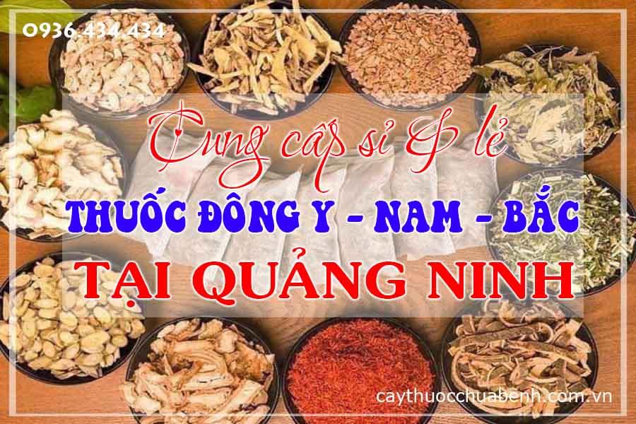quang-ninh-mua-ban-si-le-thuoc-dong-y-nam-bac-ctyduoclieuhonglan