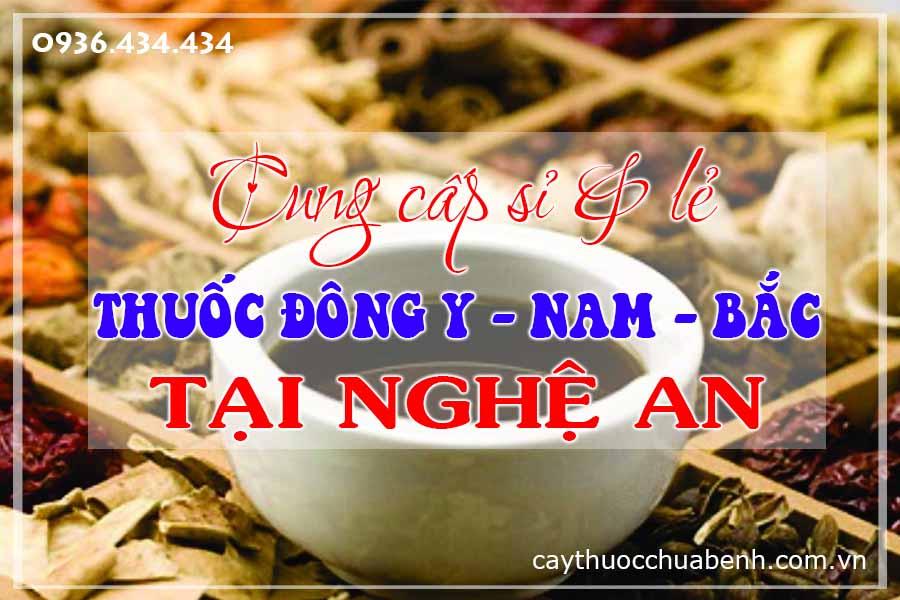 vinh-nghe-an-mua-ban-si-le-thuoc-dong-y-nam-bac-ctyduoclieuhonglan