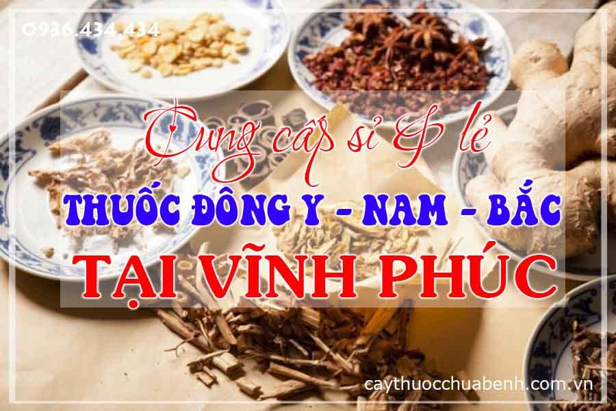 vinh-phuc-mua-ban-si-le-thuoc-dong-y-nam-bac-ctyduoclieuhonglan